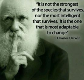Darwin survivor