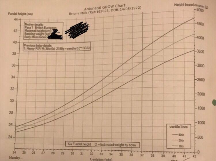 Bri's GROW chart